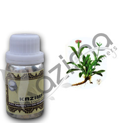 KAZIMA Spikenard Oil - 100% Pure, Natural & Undiluted
