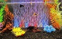 Aquarium Show LED Light 1 Feet