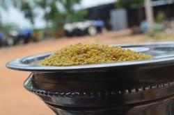 Proso Millet Dehusked(panivaragu Millet Rice) Milletindia