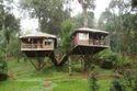 Tree House Construction Kolkata