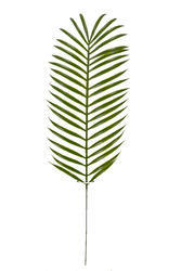 Decorative Artificial Palm Leaf