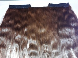 Clip Ins Human Hair Extensions