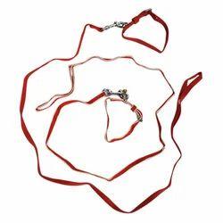 Puppy Collar Set