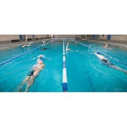 Swimming Beginner Coaching Services
