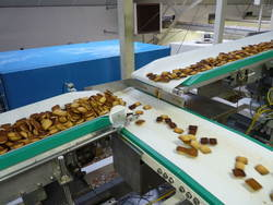 Biscuit Industries Belt Conveyor