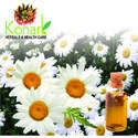 Chamomile Oil - Soluble