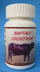 Herbal Buffalo Colostrum Capsule