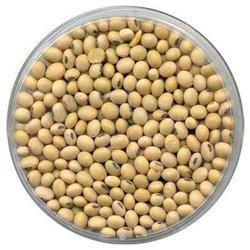 Eastmade Soybean Seeds
