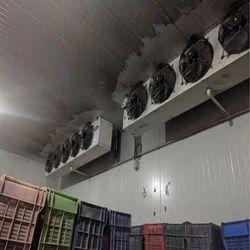 Vegetables Cold Storage