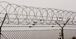 Barbed Wire Fencing Suppliers Manufacturers Amp Traders