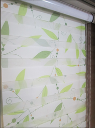 Printed Zebra Blinds