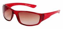 2296 Sun Glasses