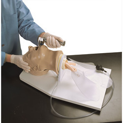 Airway Larry Adult Airway Management Trainer With Stand