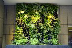Vertical Garden at Rs 600 square feet Vertical Gardens ID