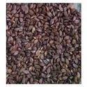 Sitaphal Seed