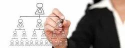 Organisation Restructuring Services