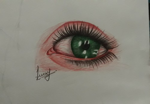 Paper Colour Pencil And B W Both Type Of Work Sketch Artist Rs 1500 Number Id 18907901933