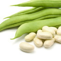 French Bean Seed