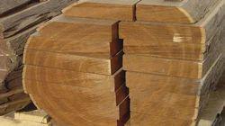 Export Quality Teak Wood