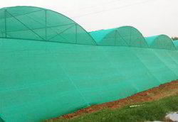 Tunnel Type Shade Net House