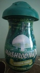 Mushroomex Ayurvedic Weight Gainer Protein Powder