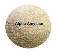 Bacterial Alpha Amylase