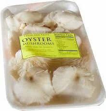 Jharkhand Fresh Oyster Mushroom