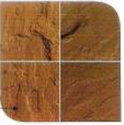 Brown Autumn Sandstone