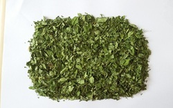 Moringa Natural Dry Leaves