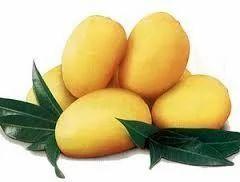 Raw Chaunsa Mango