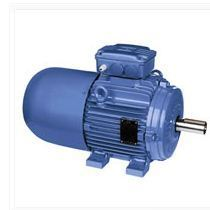 1 250x250 weg industries, hosur manufacturer of electric motors and brake weg w22 wiring diagram at readyjetset.co
