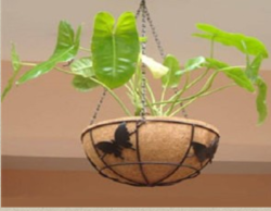 Coir Baskets At Best Price In India