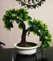 Hyperboles Green Artificial Bonsai Plant With Pot