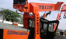 Pick & Carry Crane Rental Service