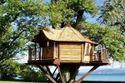 Bamboo House Architecture Mumbai
