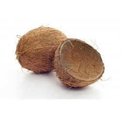 Manufacturer of Fresh Coconut & Dried Coconut by Kasturi