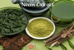 Neem Extract