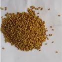 Medicago Sativa Seeds (alfalfa Seed), For Herbs, Pack Size: 25 Kg