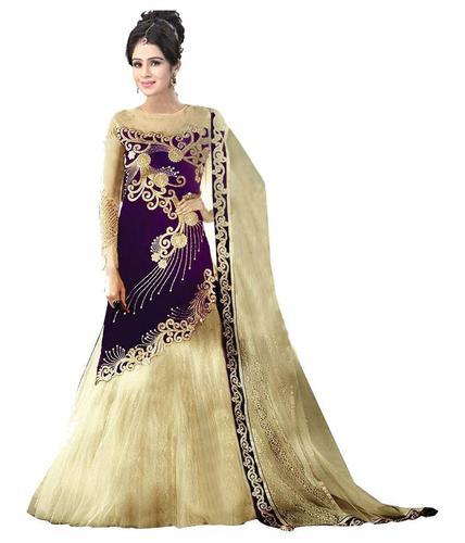 428473c5857 Ethnic Party Designer Ladies Gown