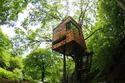 Tree House Construction Chennai