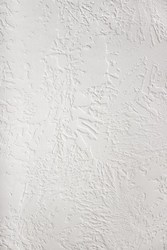 Ceiling Texture Painting Service