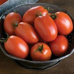 K.u.t Tomato