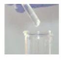 Tri Phenyl Phosphite