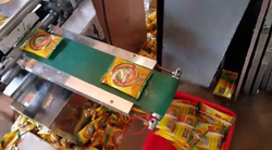 Round Appalam Packing Machine