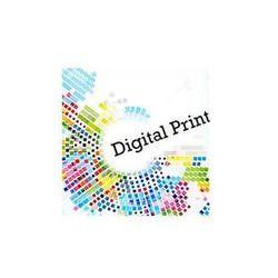 4 To 5 Days PVC Digital Flex Printing
