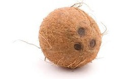 Coconut Testing Services