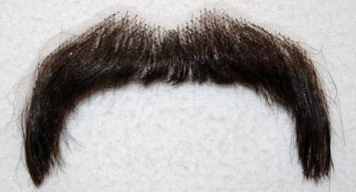 Artificial Moustache