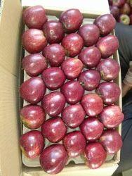 Shimla Royal Delicious Apples