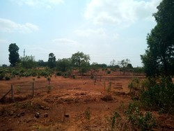 Agriculture Land Sale in India