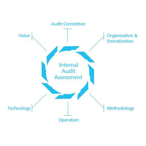 Online Monthly Internal Audit and Assessments